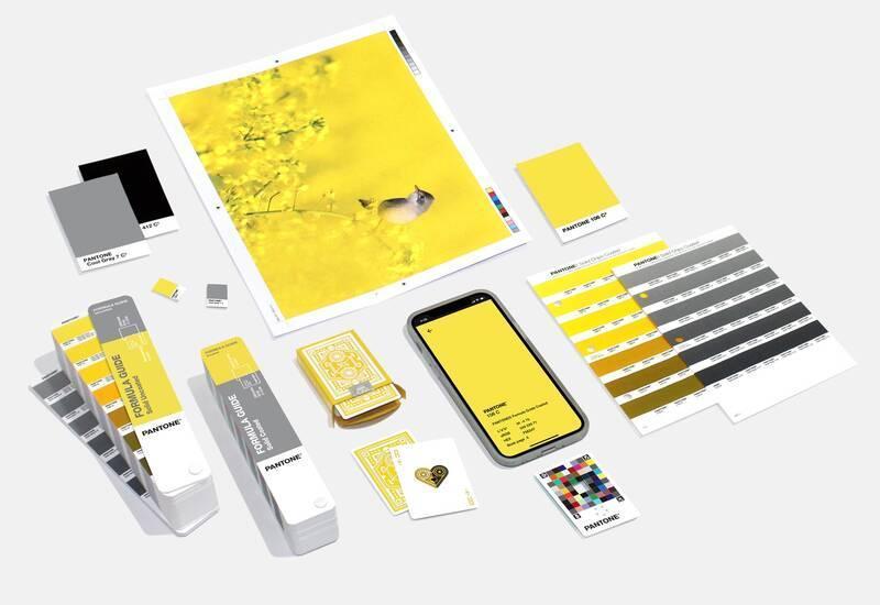 Emsemble d'ogbets : portable, images, avec les couleurs pantone 2021