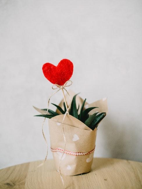 plante, papier craft, cœur rouge en décoration