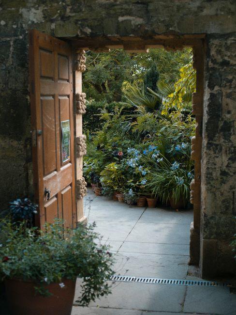 jardin extérieur avec porte en bois