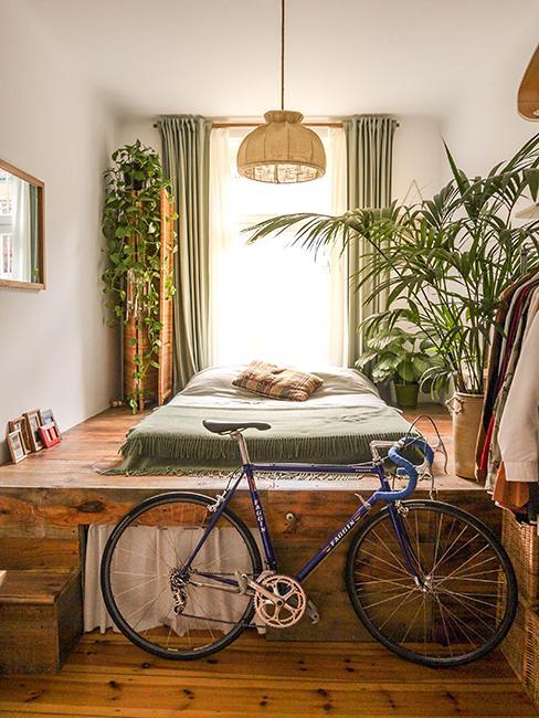 chambre avec plantes et velo