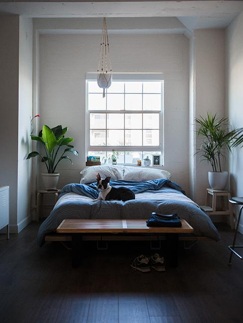 chambre avec linge de lit bleu