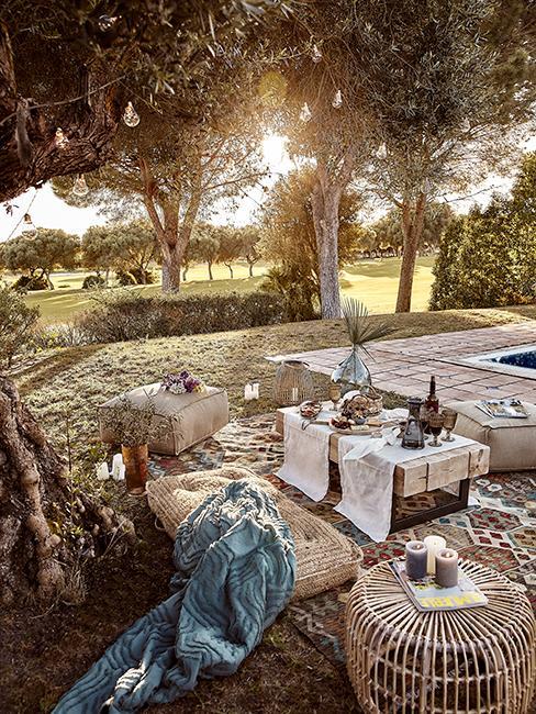 jardin avec salon de jardin en bois