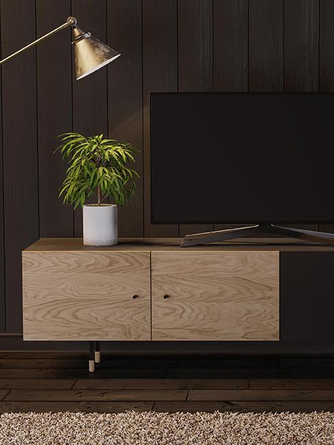 meuble tv en bois avec une plante dessus