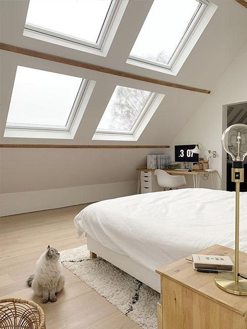 chambre-chat-velux