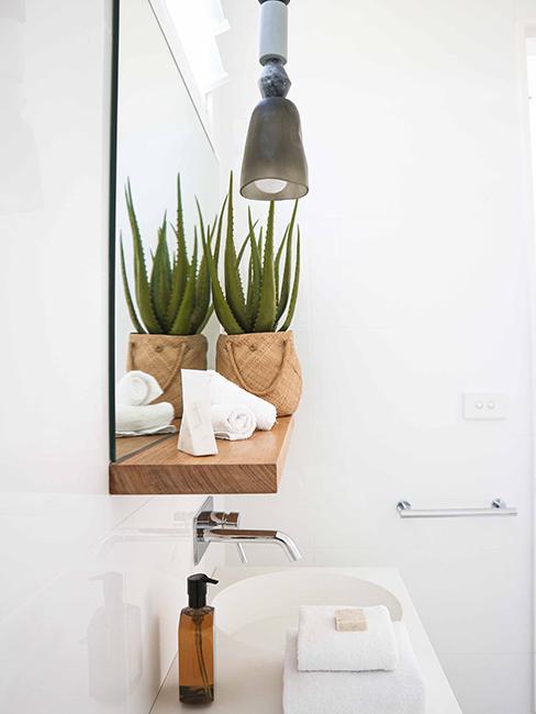 toilette avec étagère en bois et plante
