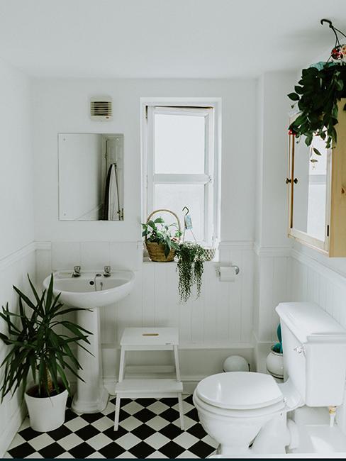 toilette avec sol en carreaux noir et blanc, escabeau blanc et plantes