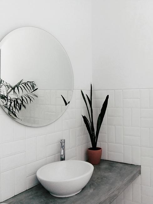 toilette avec lavabo blanc, et miroir rond