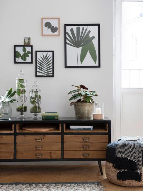 enfilade en bois type apothicaire, cadres en bois avec feuilles des plantes accrochés au mur blanc