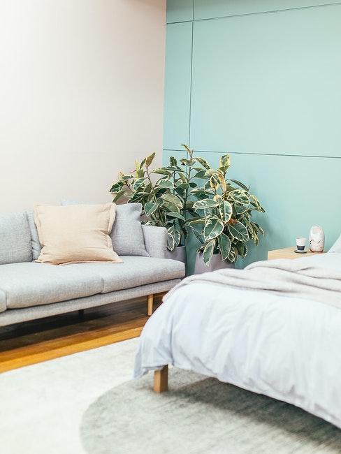 chambre à coucher pastel, mur en boiserie vert menthe, canapé bleu, plante verte et linge clair
