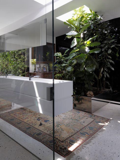 pièce moderne, plantes vertes type jungle, tapis oriental, mur en verre
