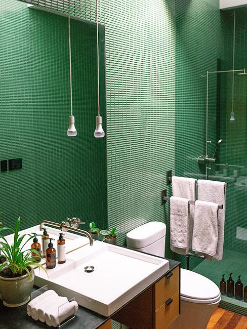 toilette avec mur vert
