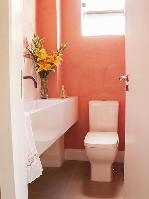 toilette avec mur corail