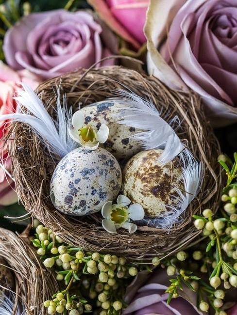 décoration œufs dans un nid