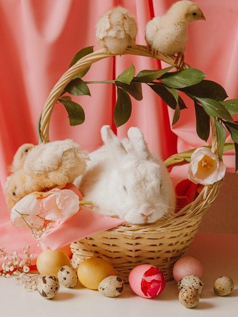 lapin blanc dans un panier en osier pour Pâques