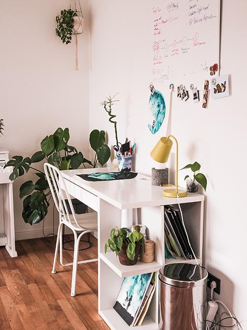 bureau blanc et plantes