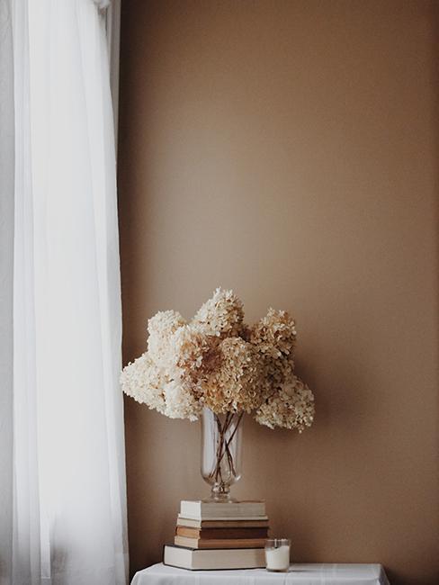 vase avec fleur et mur beige foncé