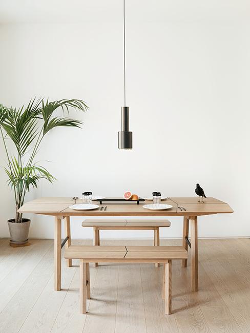 cuisine minimaliste avec table en bois et plante