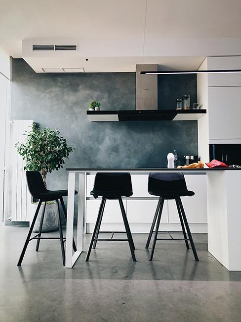 cuisine moderne avec mur gris