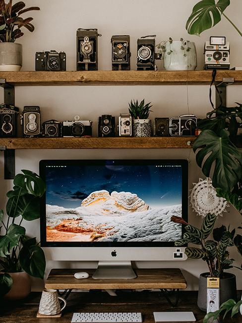 bureau avec appareil photo et plantes