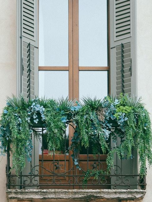 Volet peint avec balcon parisien