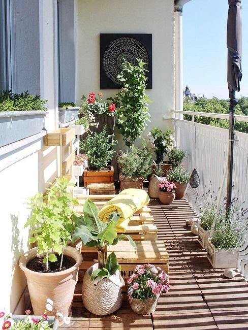 meubles de jardin en palette sur balcon avec plantes