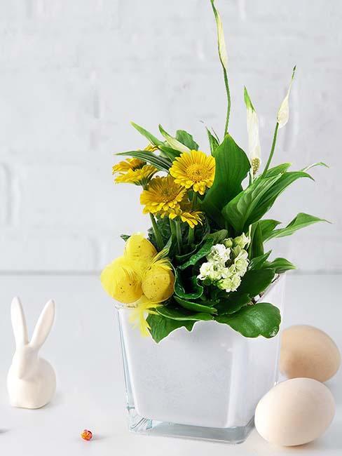fleurs-jaunes-paques
