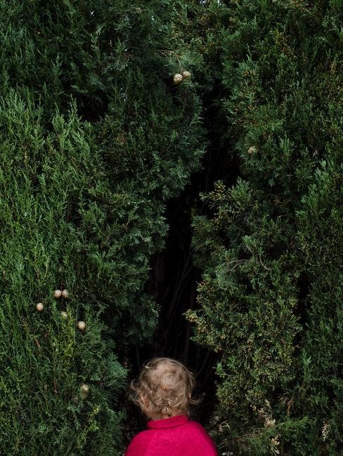 petite fille devant un mur d'arbustes grimpants dans le jardin