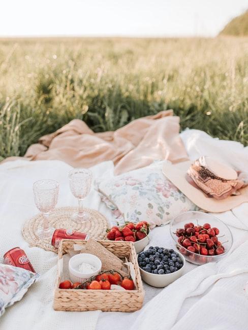 pique-nique romantique avec fruits et champagne