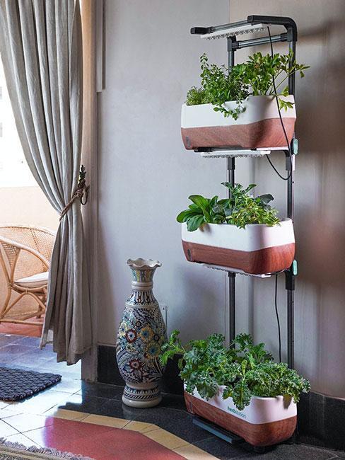 salon avec support de jardinière mural