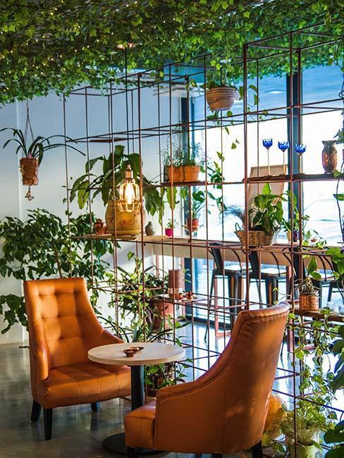 café avec jardin vertical décoratif et fauteuil en cuir