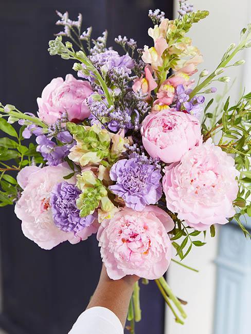 pivoines-roses-violettes
