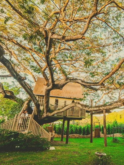 grande cabane dans un jardin