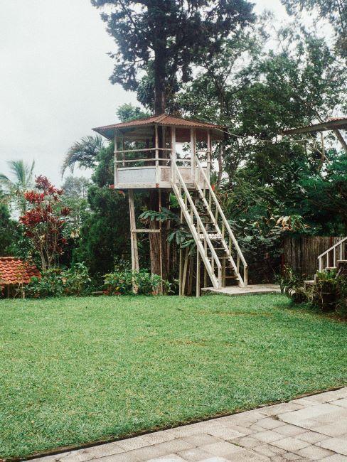 cabane dans jardin avec escalier blanc