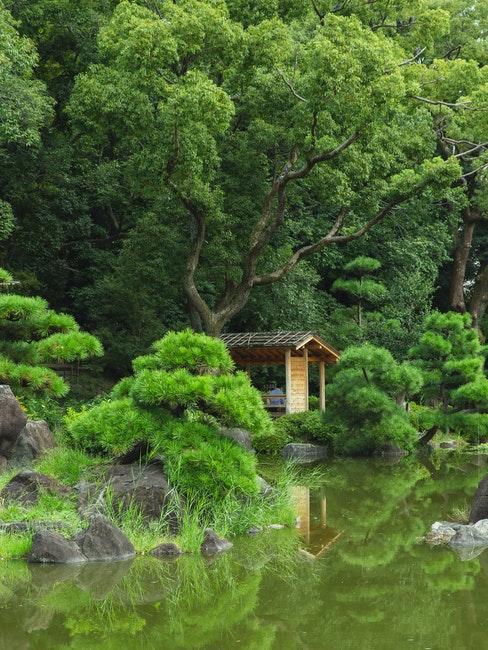 abri de jardin zen japonais