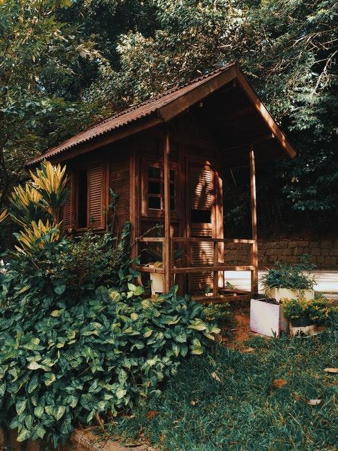 abri de jardin rustique en bois