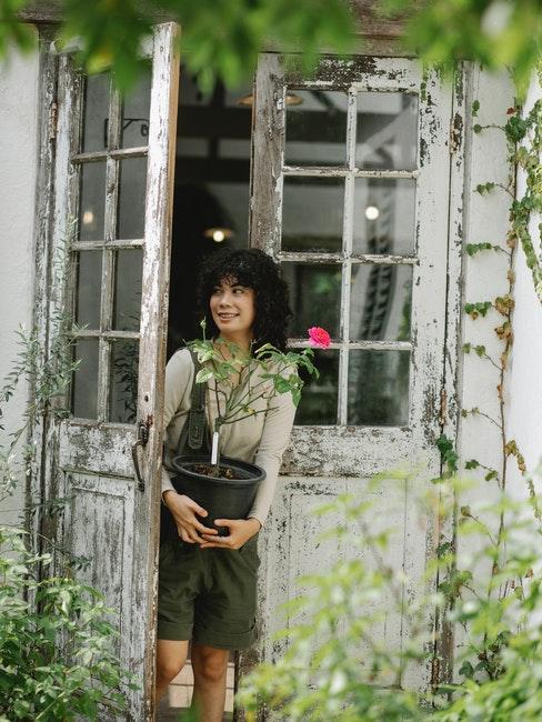 véranda de jardin vintage