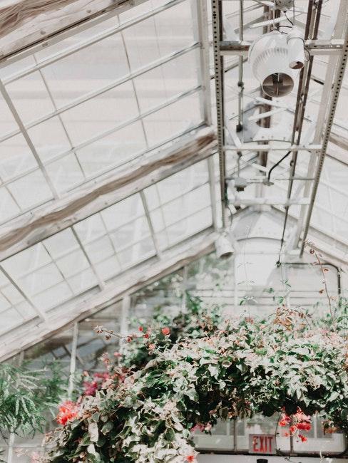 toit d'une verrière de jardin