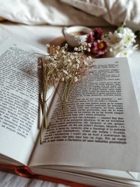 fleurs séchées et livre
