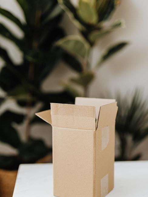 paquet, vente online