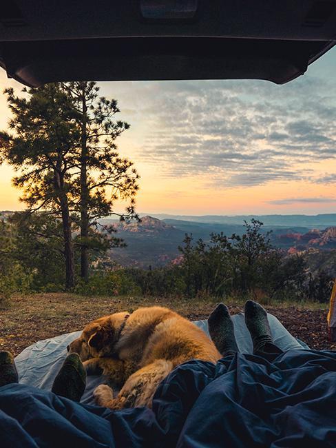 vue de l'intérieur d'un van sur un coucher de soleil