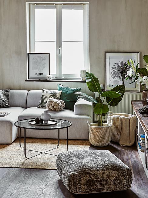 salon moderne avec plantes