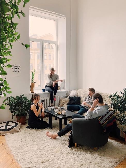 salon moderne avec plante verte et tapis cosy