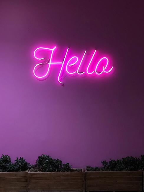 mur violet avec néon Hello