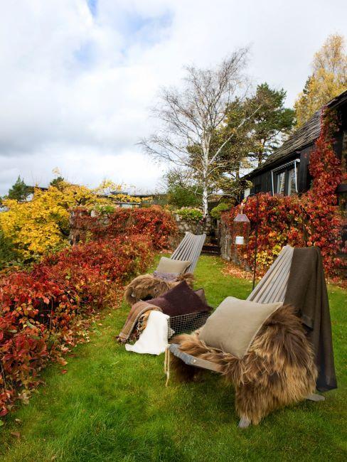 extérieur automne, fauteuils d'extérieur, peau, coussins