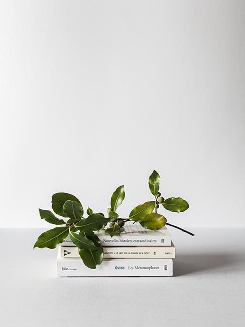 livres avec plantes