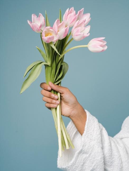 bouquet de tulipes roses