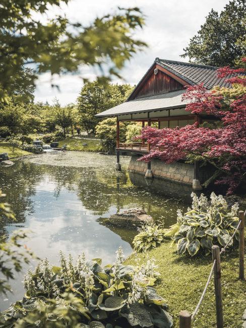 Esempio di giardino giapponese