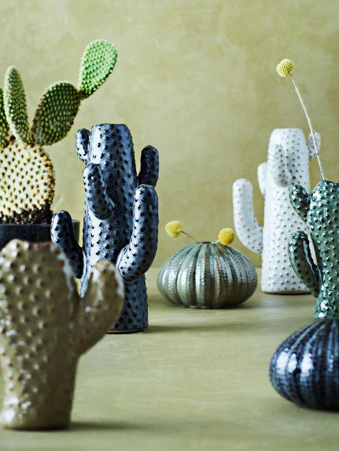 Vasi a forma di cactus