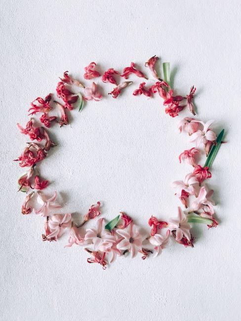 Ghirlanda fai da te con fiori freschi