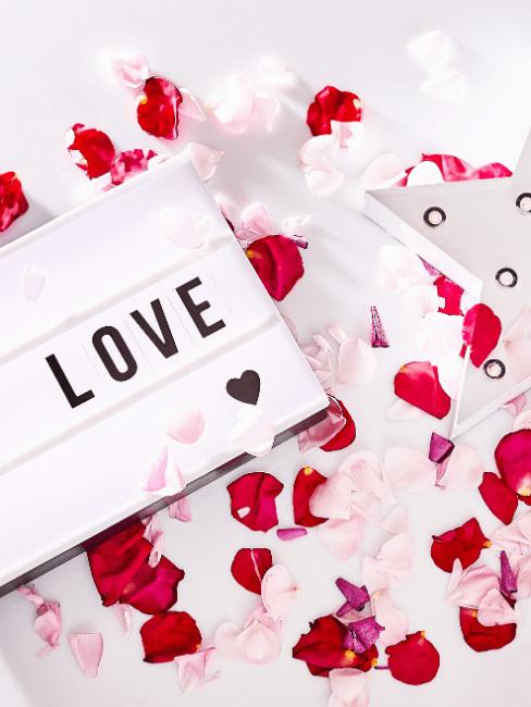 Lightbox con scritta Love e petali di rose